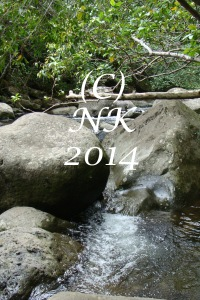 River at Iao State Park, Maui. Copyright Nefer Khepri, 2014.