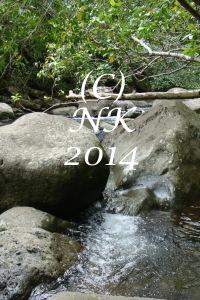 River at Iao State Park, Maui. Copyright Nefer Khepri, 2014.