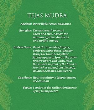 mudras brilliance back
