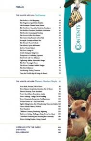 Gaian Tarot guidebook