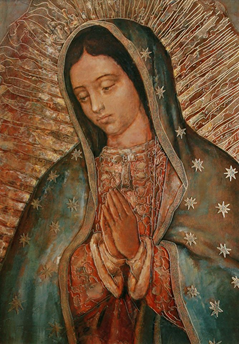 The History of the Virgin of Guadalupe.